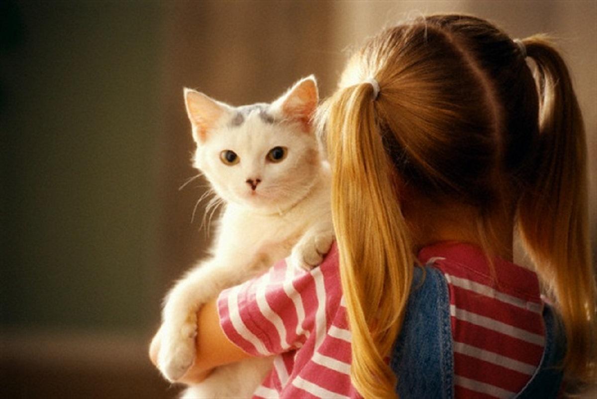 gatto in braccio a una bambina