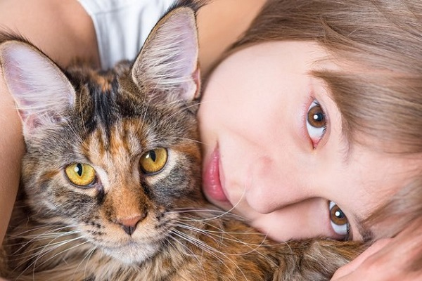 bambina abbraccia gatto meine coon