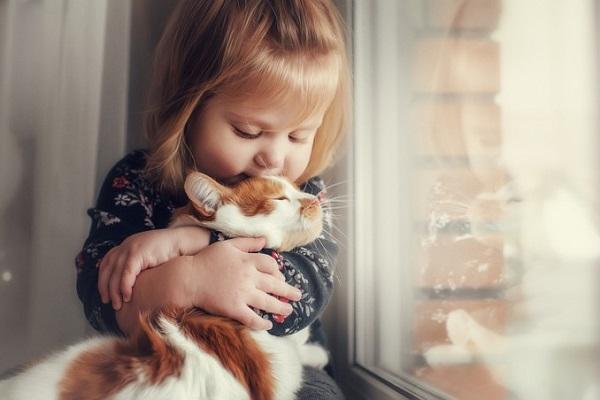 bambina e gatto alla finestra