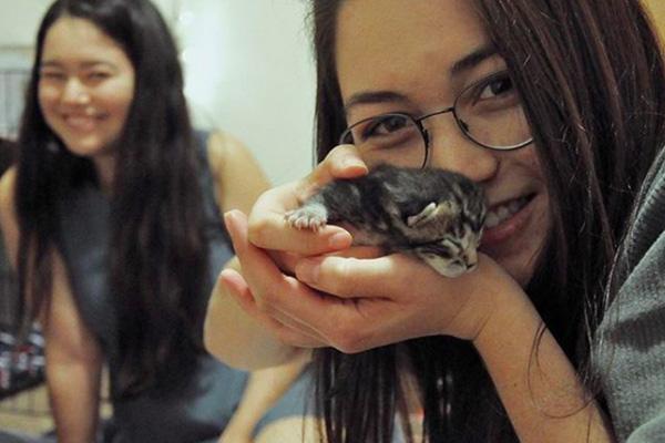 Gattino appena nato