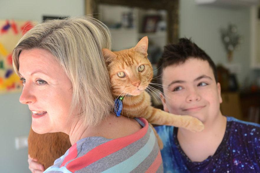 Il gatto Sandy