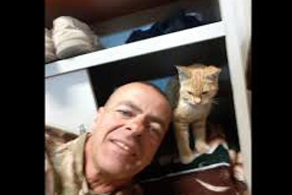 Gatto con un soldato