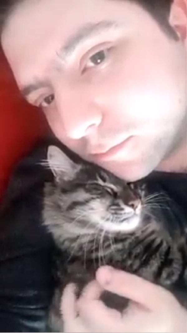 gatto-Gimmy-Diego