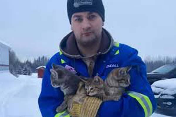 Gattini con un uomo