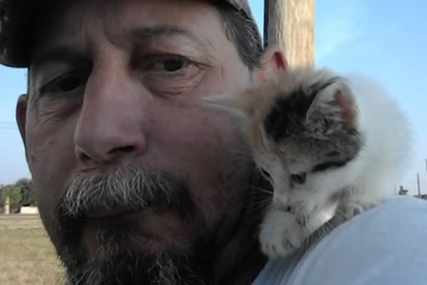Gattino sulla spalla del proprietario