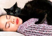 gatto si distende su ragazza con crisi epilettiche