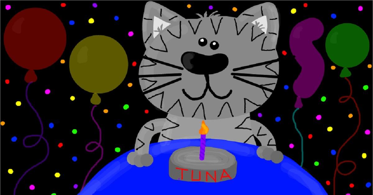 festa-gatti