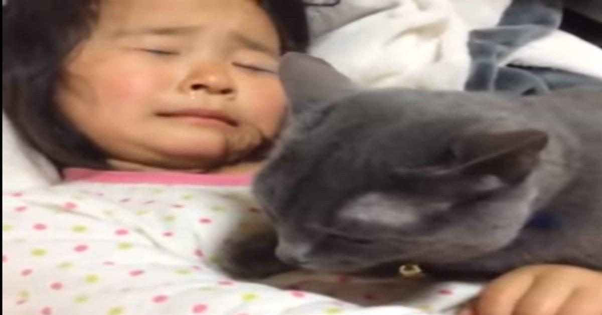 Gatto con bambina