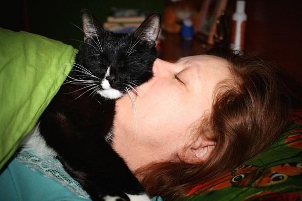 donna bacia un gatto che le dorme addosso