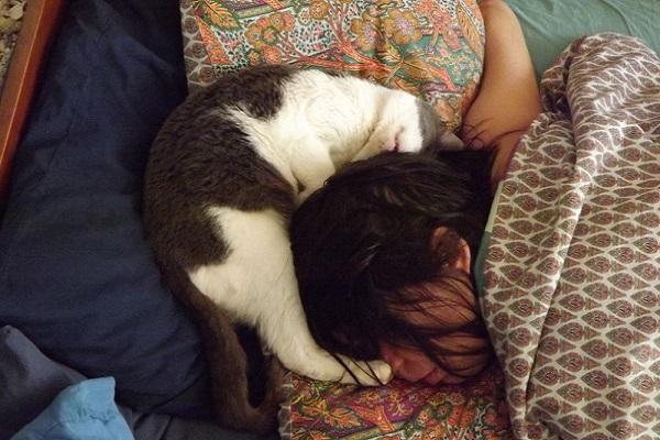 un gatto e il suo umano dormono vicinissimi