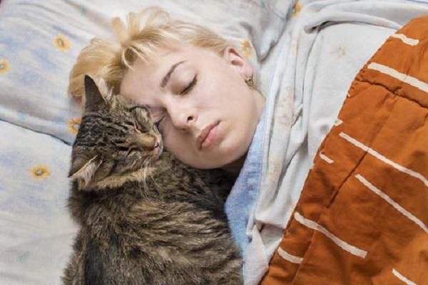 gatto e donna dormono testa contro testa