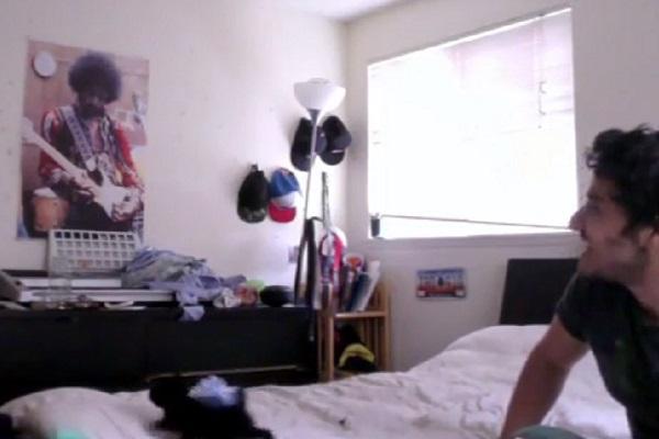 gattino regalo ragazza video