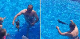 Gatto nuota in piscina