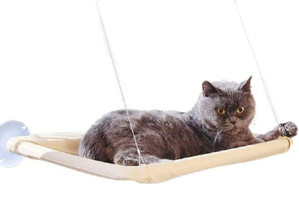 cuccia per gatti amaca