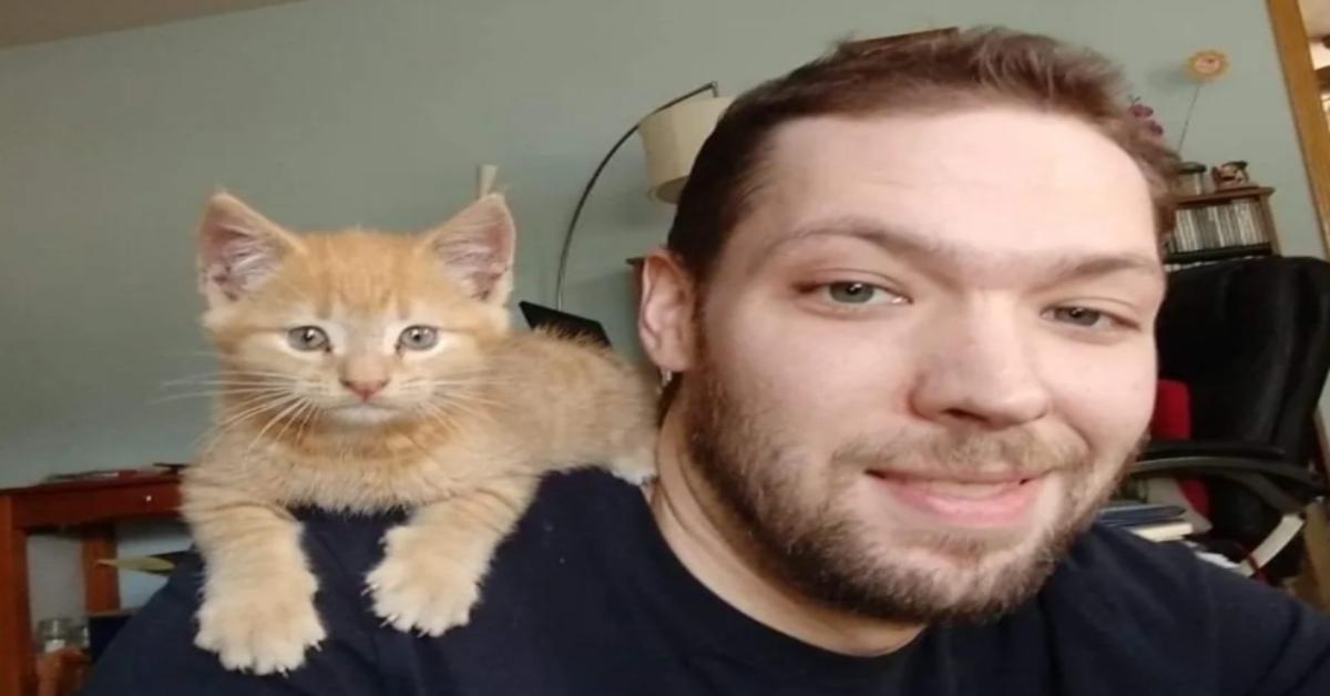 gatto con ragazzo