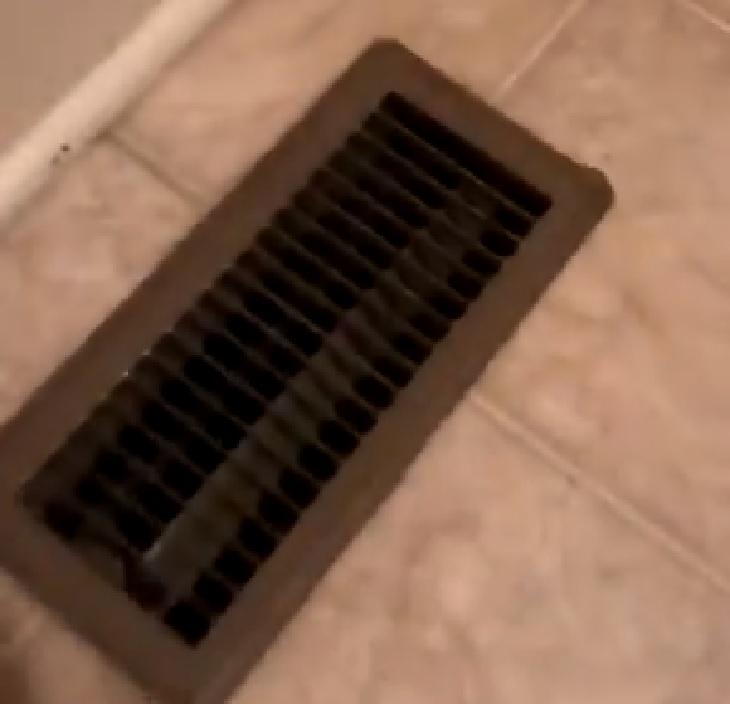 brena gattino paura salotto