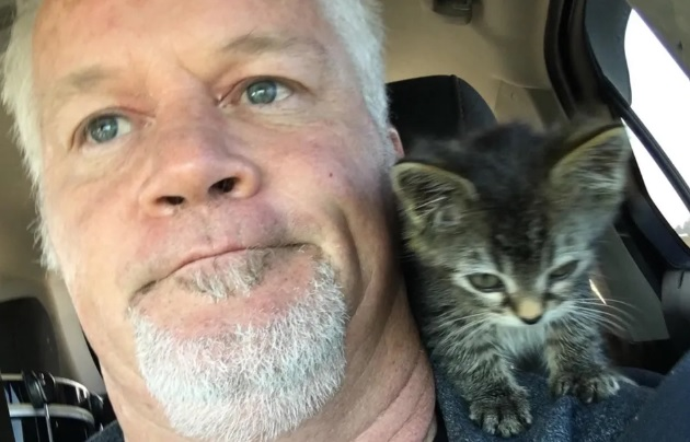 sticky gatto salvato autostrada spalla uomo