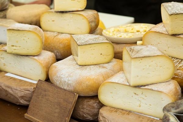 formaggio per gatto