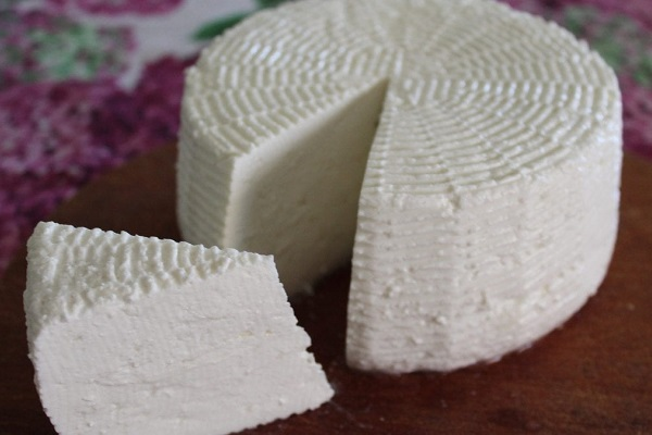 forma di formaggio per gatti