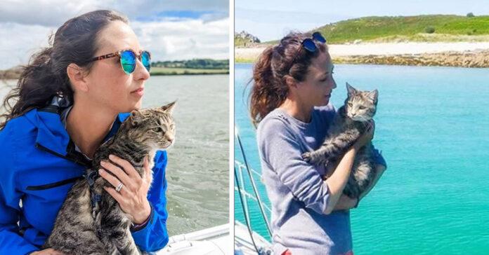 Gattino su una barca