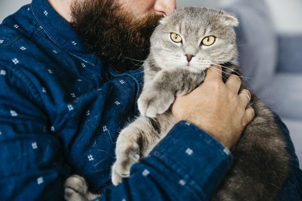 al gatto non piacciono gli abbracci