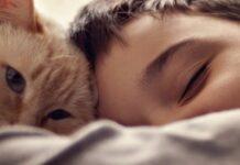 gatto e baimbo che dorme
