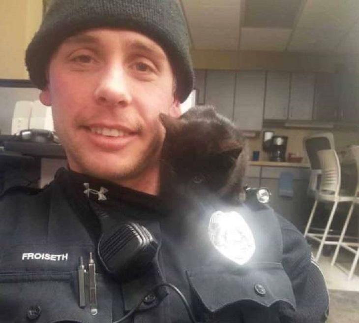 donut gattino salvataggio notte gelata