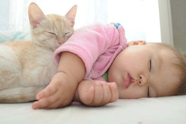 gattino che dorme con il neonato