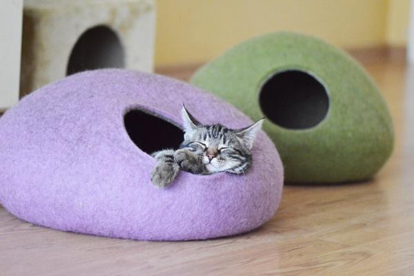 cuccia per gatti a igloo