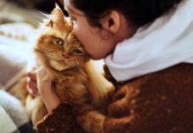 ragazza che bacia il suo gatto