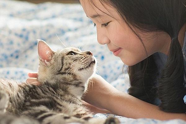 ragazzina accarezza gatto
