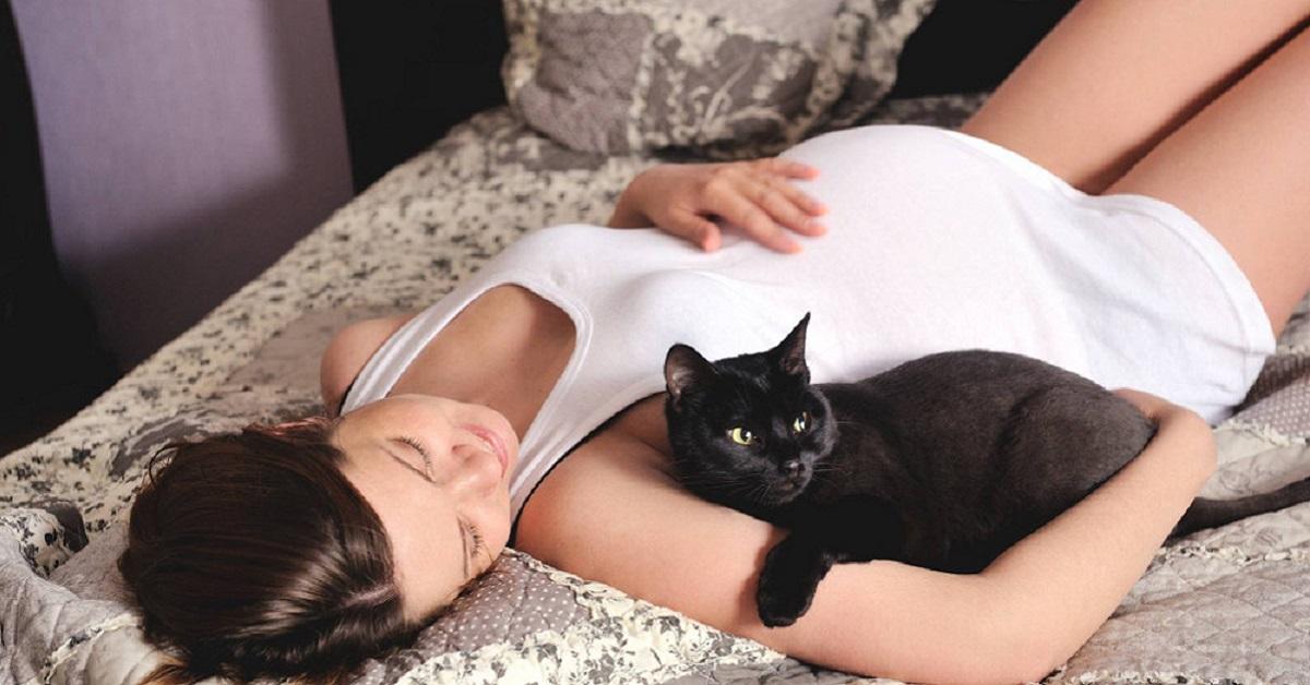 gatto e donna incinta sul lettone