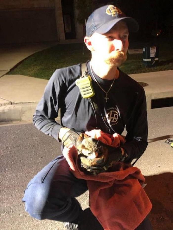 pompiere soccorso gattino