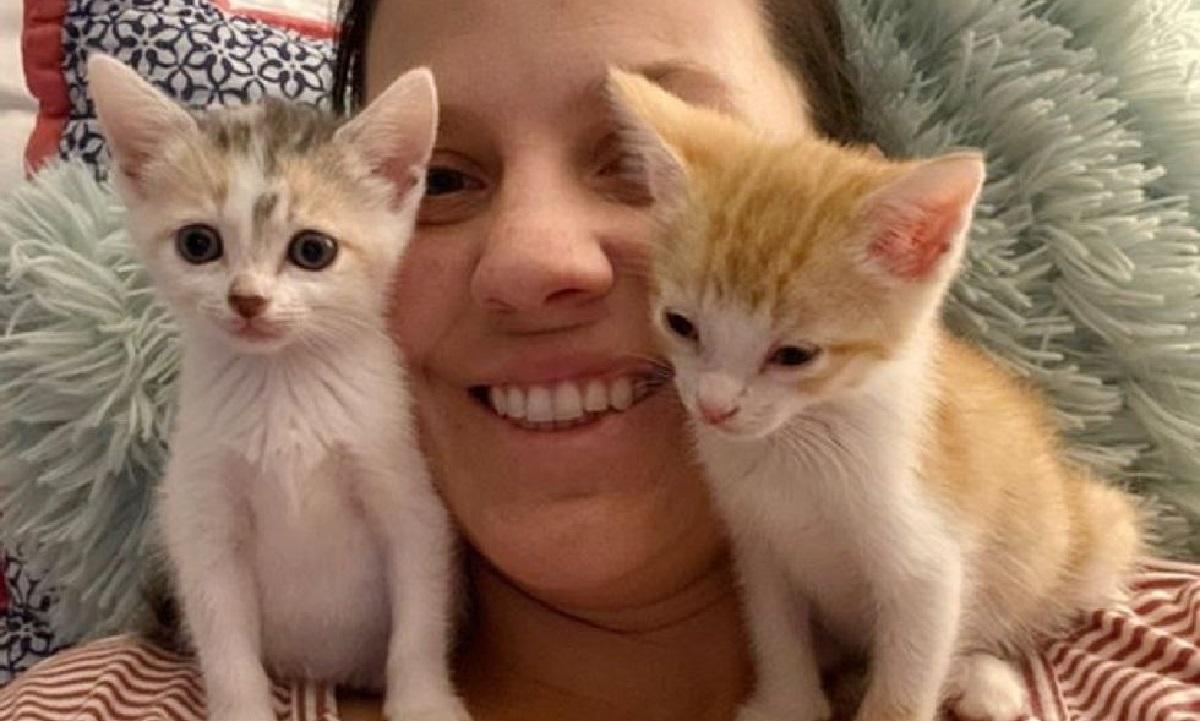 gattini volontaria foto
