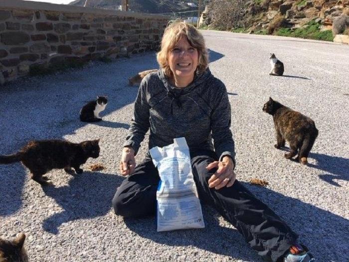 cura gattini donna