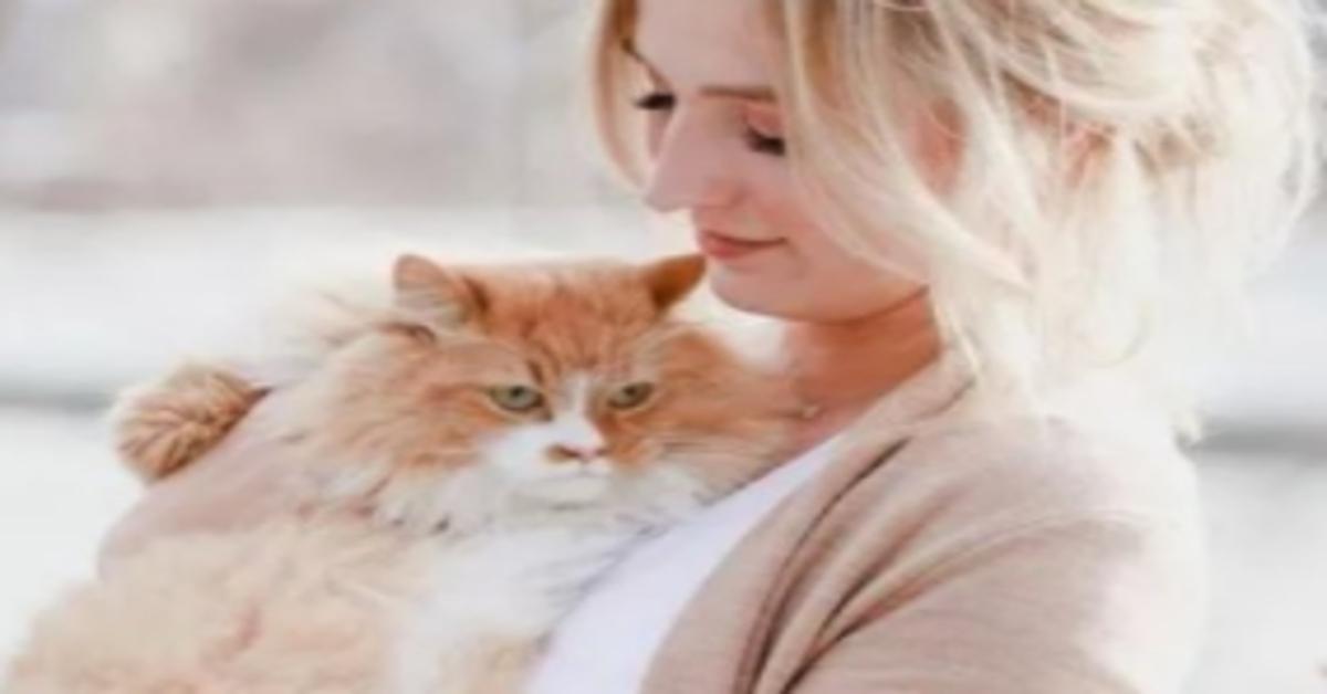 gattino in braccio a una donna