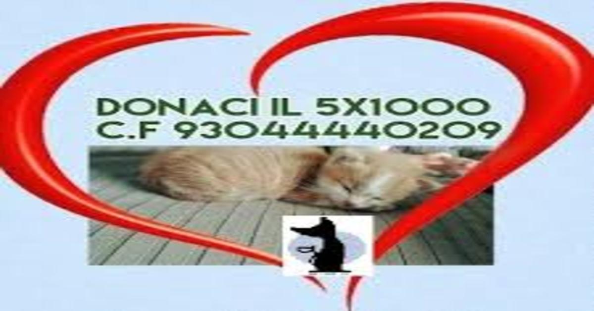 Gattile Bosco Virgiliano