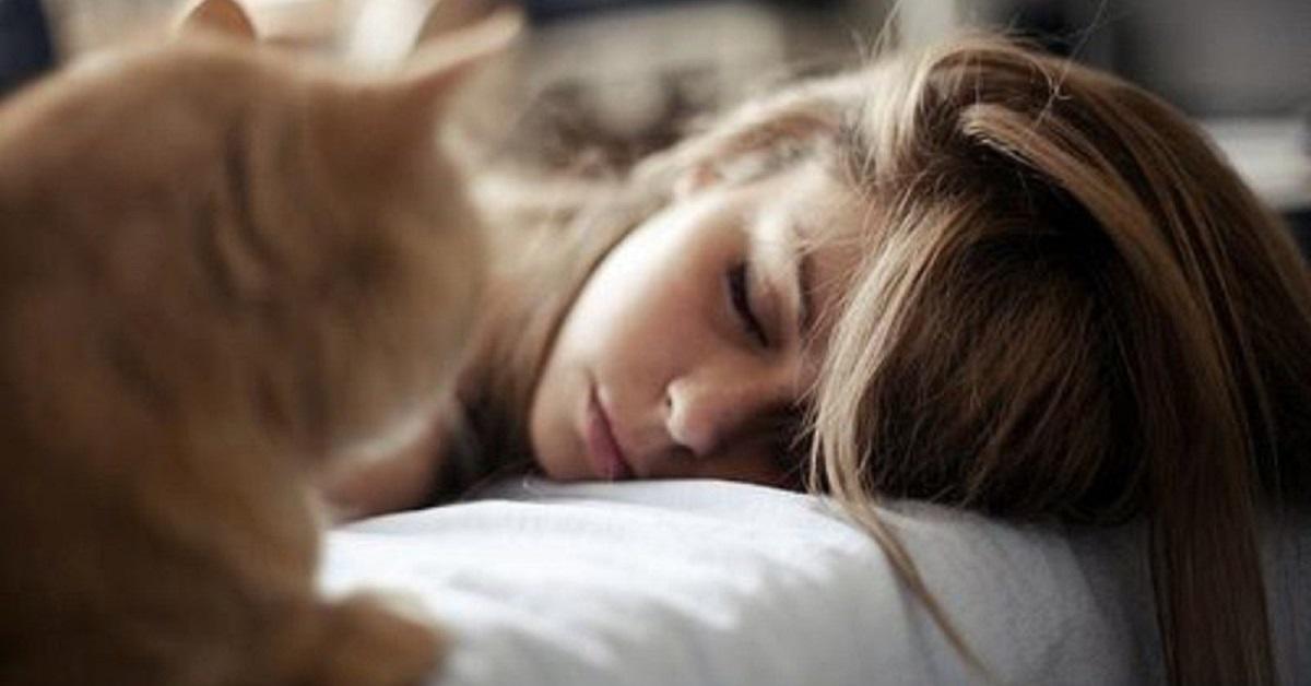 gatto guarda ragazza che dorme