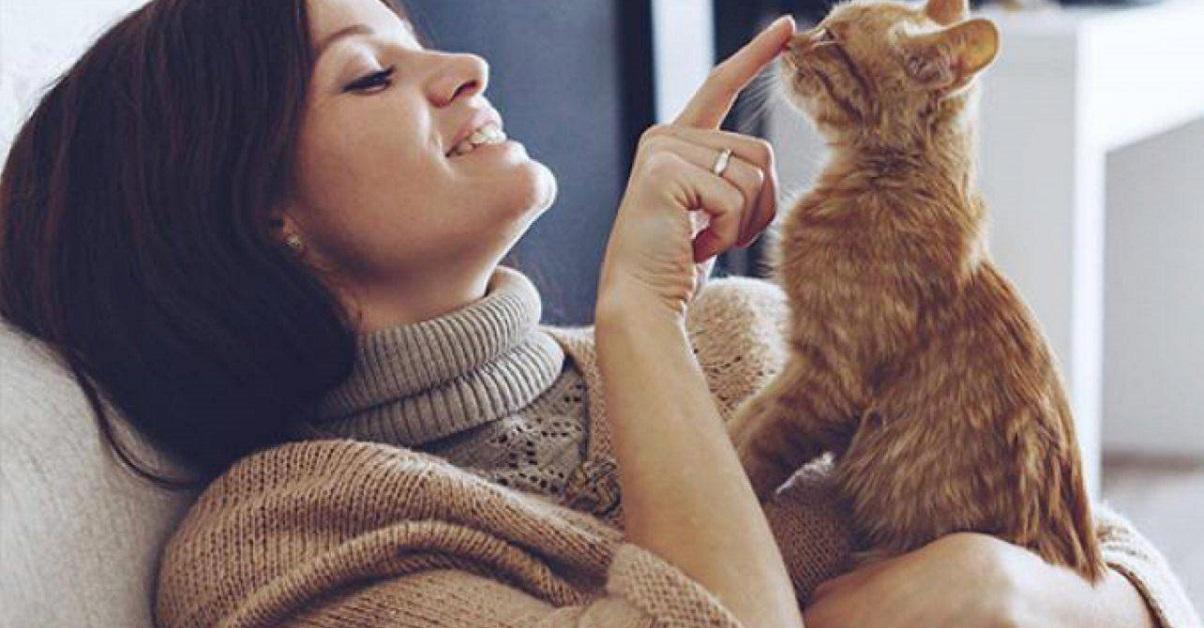 coccole a gattino rosso