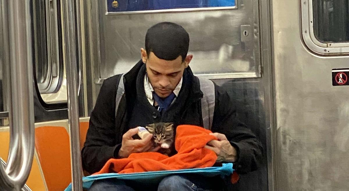 ragazzo nutre gatto