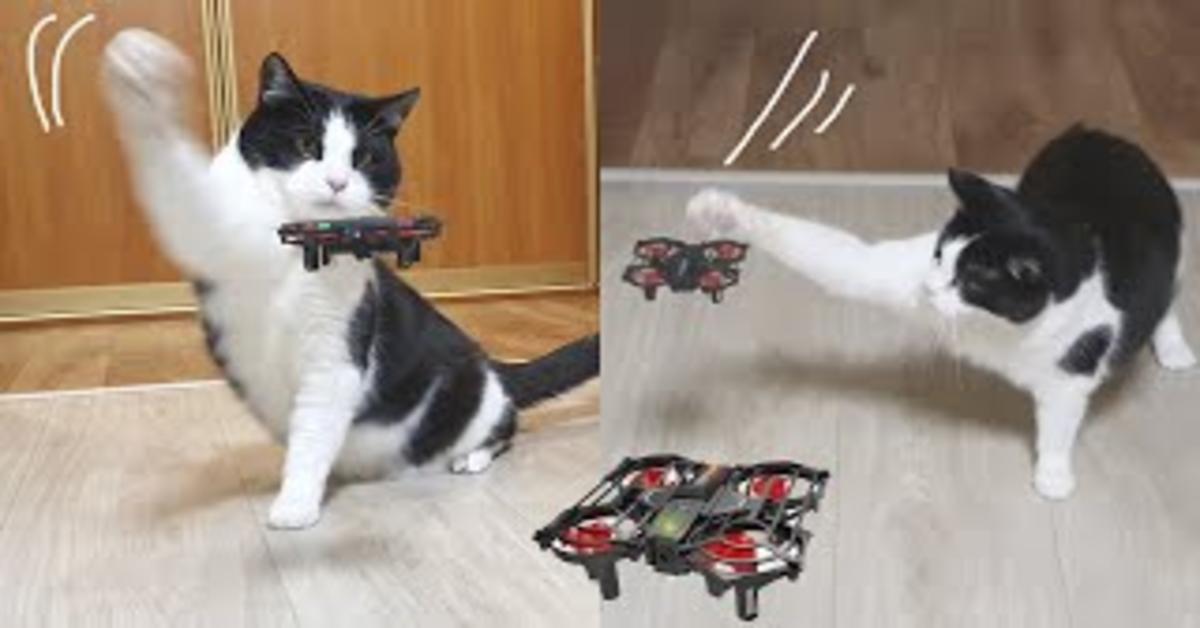 Pusic insegue il drone