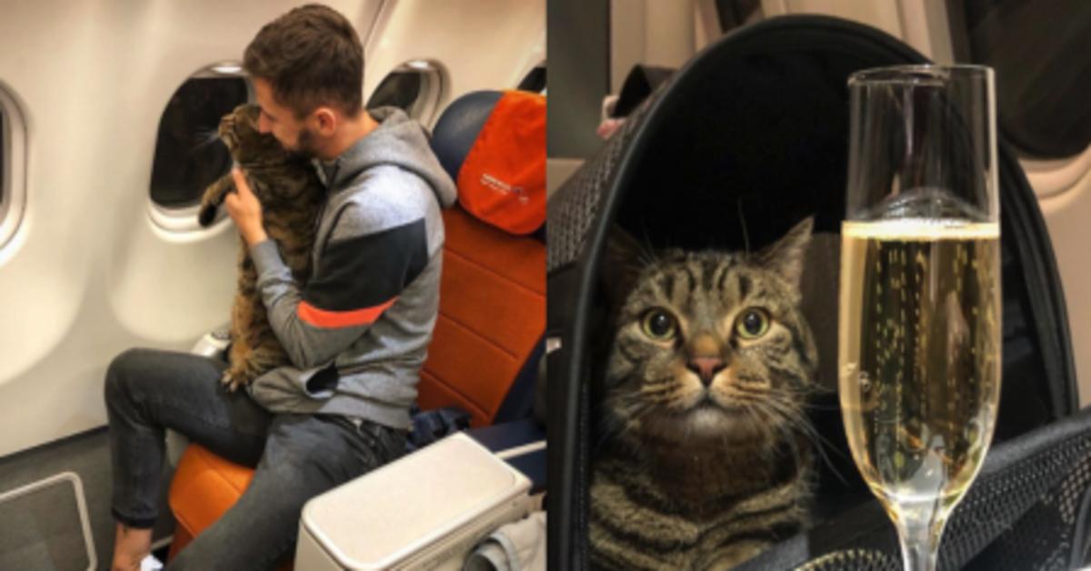 Viktor in aereo con champagne