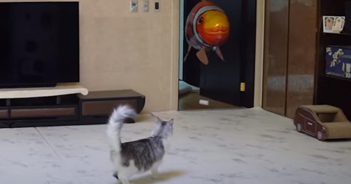 Gatto che gioca con un palloncino