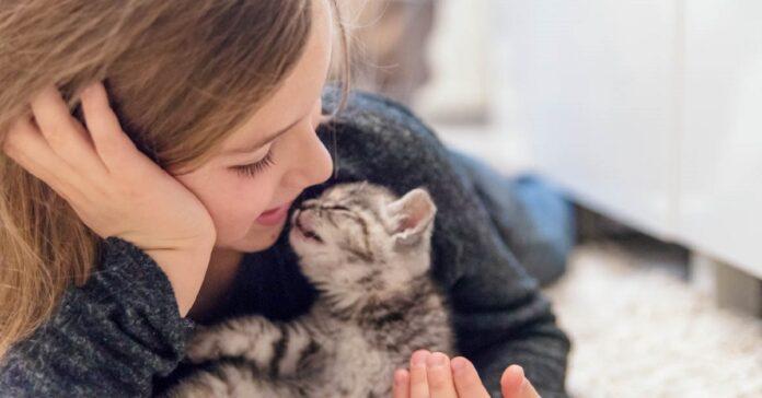 bimba e gattino
