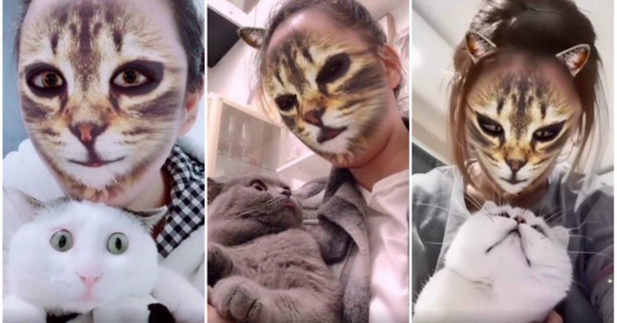 gatti e padrona con filtro TikTok