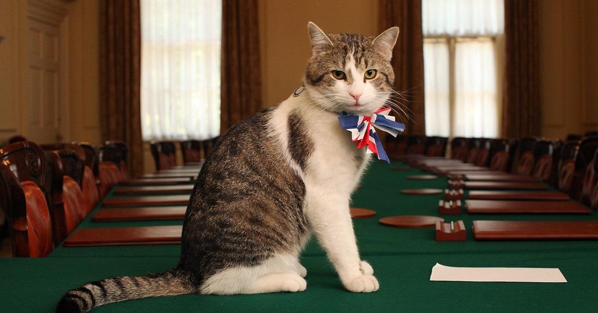 larry acchiappatopi del primo ministro inglese