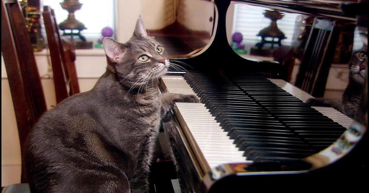 Nora si esercita al piano