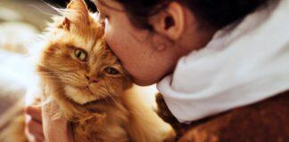 ragazza che bacia un gatto