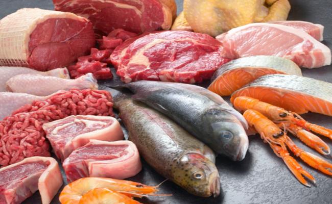 Gatto carne e pesce