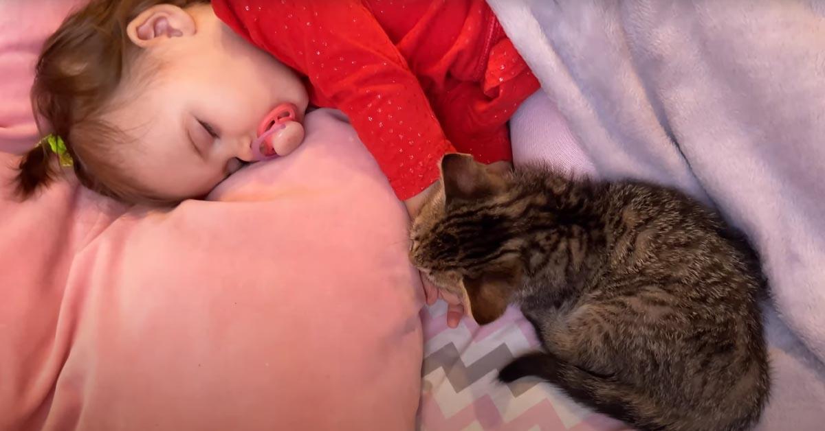 Gatto che dorme con una bambina